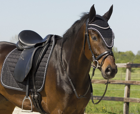 Fly bonnet for horseback riding and equestrian gear for the horse.