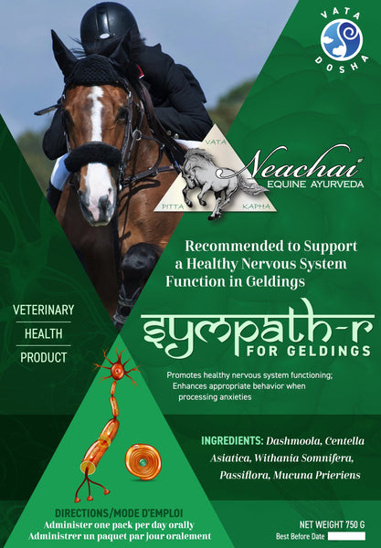 Neachai Sympath-R for Geldings recommended to support a healthy nervous system function in geldings.