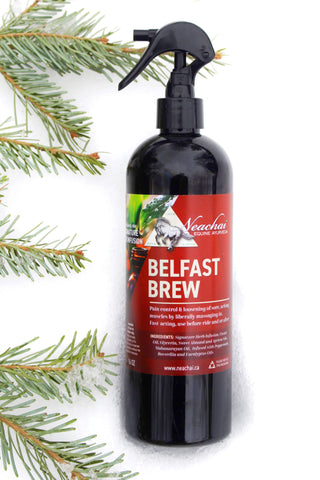 Belfast Brew Liniment - Equestrian Fashion Outfitters