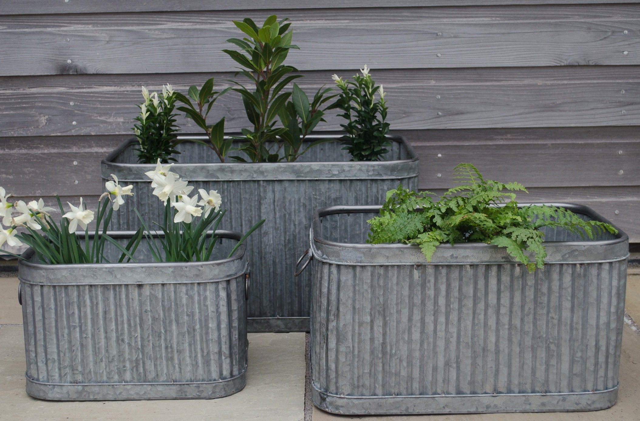 cox cox fluted planters