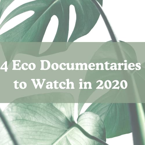 4 Eco Documentaries to Watch in 2020
