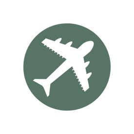 green icon of an airplane to represent international shipping