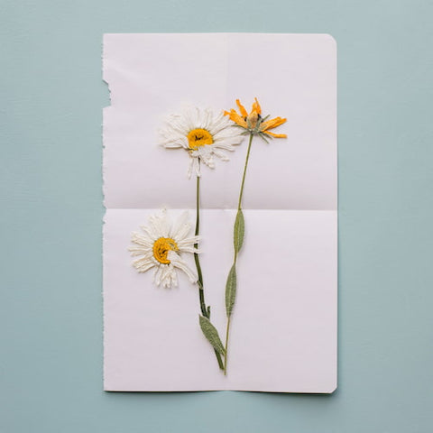 paper card with a natural flower