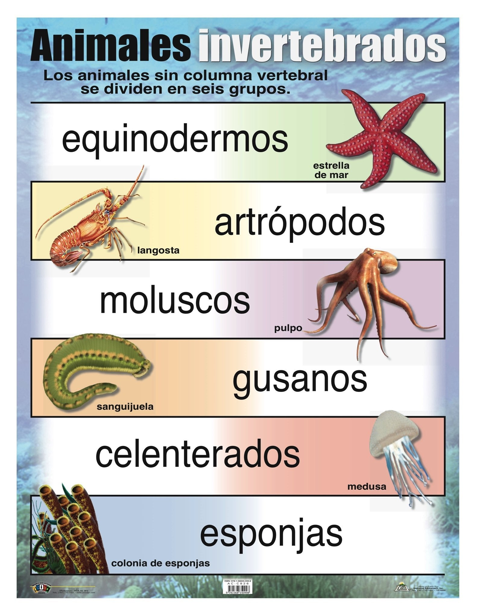 AC-C826 Animales invertebrados