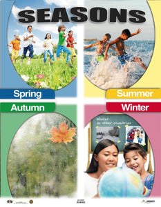 AI-C008 Seasons