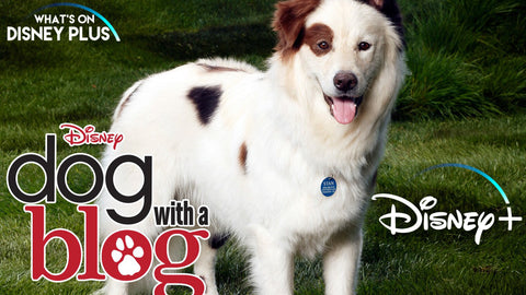 Dog with a blog, tv shows for tweens, netflix shows for tweens