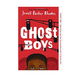 Ghost Boys, Books for Tween and Teen Boys on SALT effect Best Gifts for Tween and Teen Boys - best gifts for 14-year-old boys