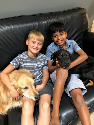 Picture of boys and dogs