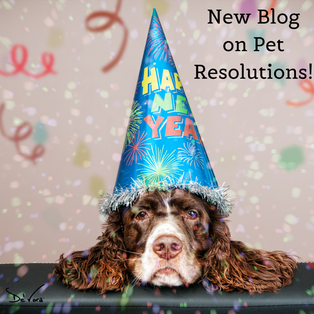 What are your pets' New Year's Resolution?