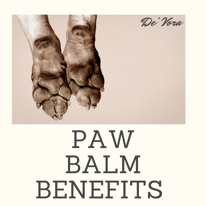 Paw Balm; Like lotion for humans!