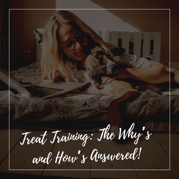 Treat Training: The Why's and How's Answered!