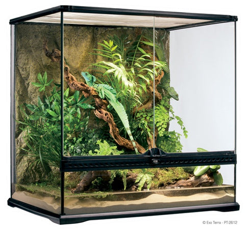 "Exo Terra Medium Tall Terrarium (24"" x 18"" x 24"")"
