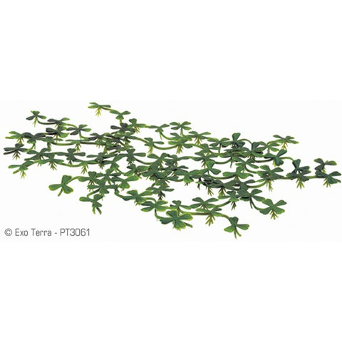 Exo Terra Floating Water Plant - Duck Weed
