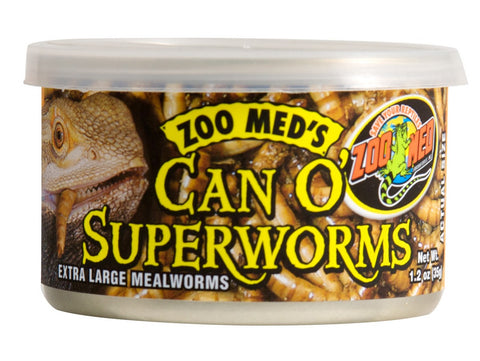 Zoo Med Can O' SuperWorms (Zophobas Morio)