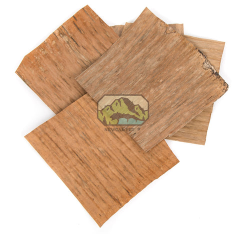 Banana Leaves (10 pack)
