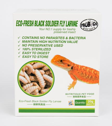 Eco-Fresh Black Soldier Fly Larvae