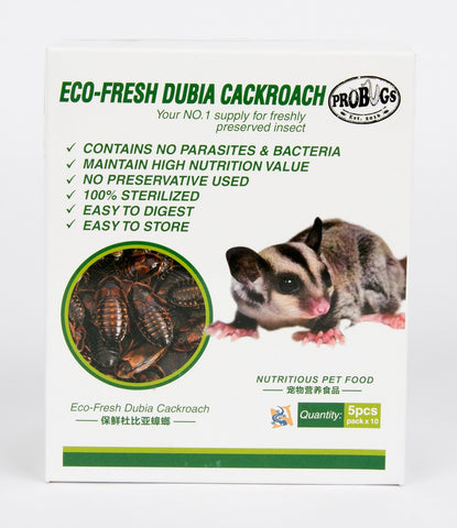 Eco-Fresh Dubia Cockroaches