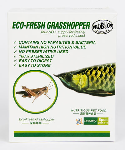 Eco-Fresh Grasshoppers