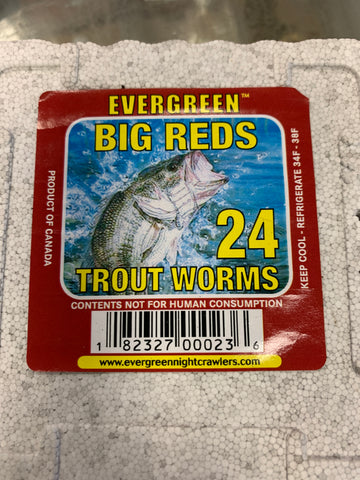 Trout Worms 24 pack
