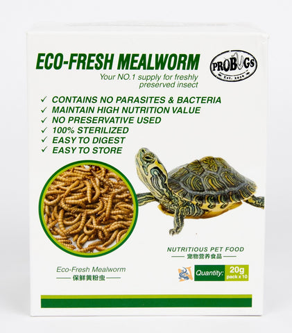 Eco-Fresh Mealworms