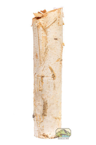 "Birch Tree Branch (1.5""-3"" Dia)"