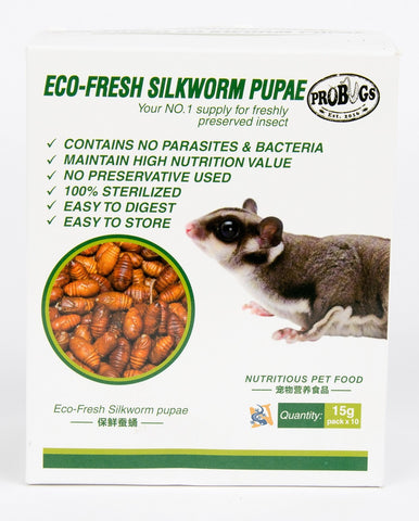 Eco-Fresh Silkworm Pupae