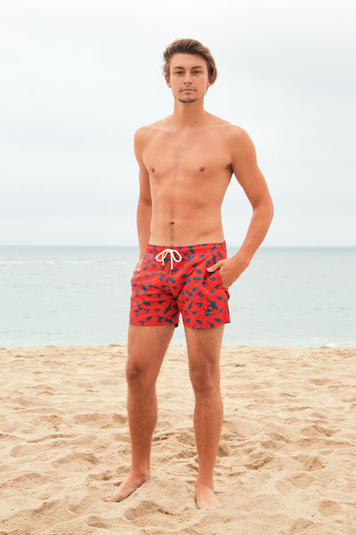 Great Blue Sharks Boardshorts