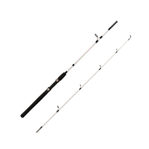 Spinning Rod and Reel Combo Rear Drag