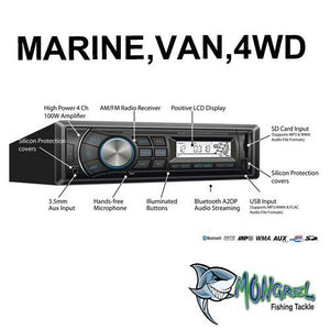 NEW MARINE AUDIO PLAYER RADIO STEREO HEAD UNIT BOAT VAN OUTDOORS 4WD BLACK