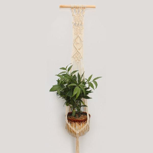 Single Macrame Plant Hanger