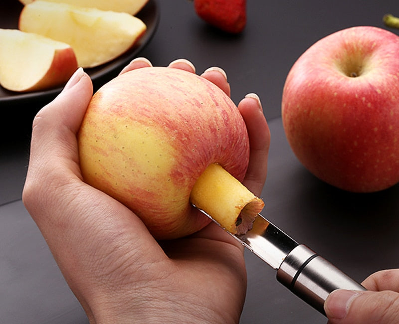Stainless Steel Fruit Core Remover