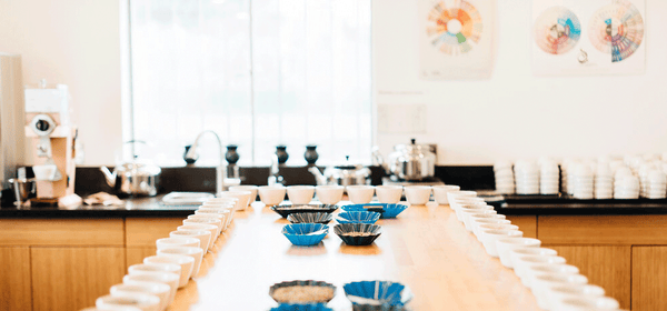 Grand Parade Hosts Exclusive Kenya Cupping Event