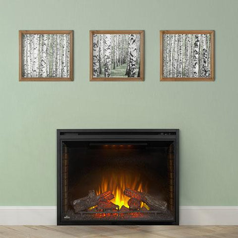 "Image of Napoleon Ascent 33"" Built-in Electric Firebox - Electric Fireplace - Napoleon - ElectricFireplacesPlus.com"