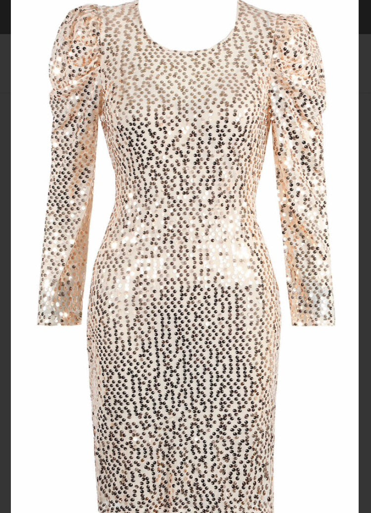 Ivory Gold Sparkly Sequin Dress with Puff Shoulders
