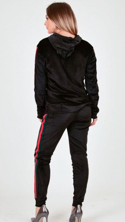 Gucci inspired Velour Jogger