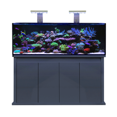 D-D Reef-Pro 1500 Aquarium - Octopus 8 aquatics Ltd