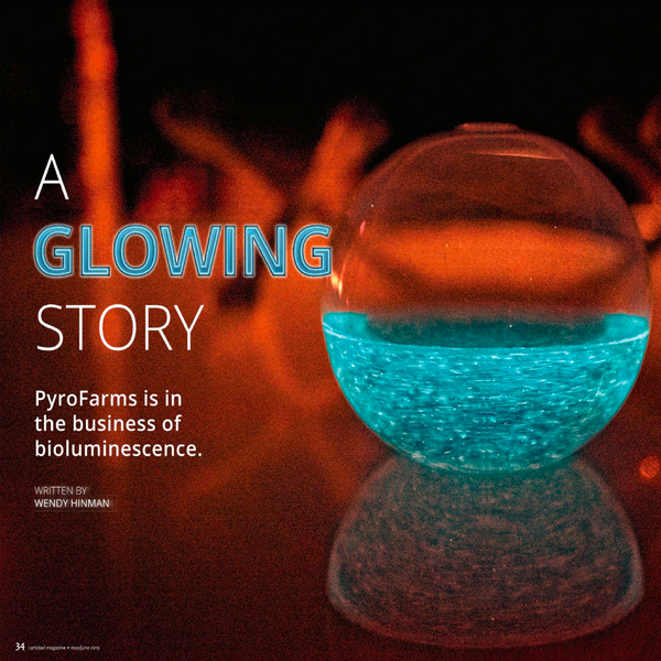 A Glowing Story - Carlsbad Magazine