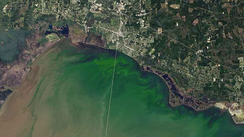 Satellite images algae bloom on Lake Ponchartrain