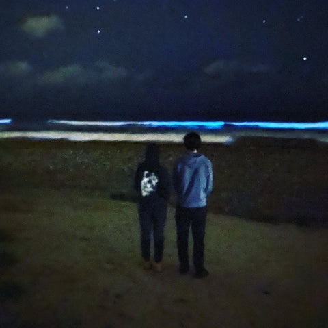 E and E at the bioluminescent beach