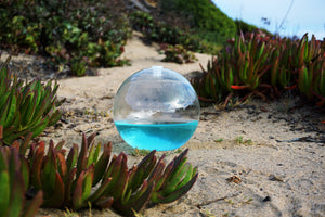 Blue Boost DinoNutrients Bio-Orb example beach