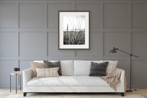 Beach Grass Black & White Print