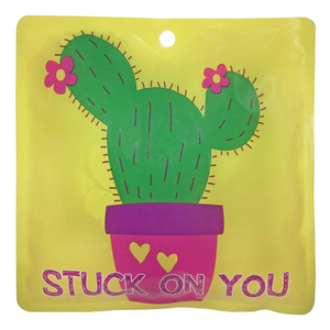 Freeze n' Go Reusable Ice Sheet (Cactus)