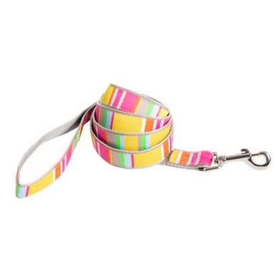 Happy Yellow Stripe Dog Leash