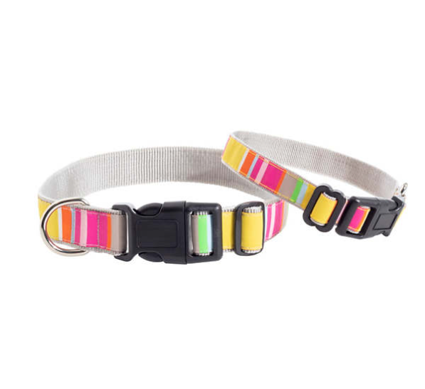 Happy Yellow Stripe Dog Collar Medium/Large