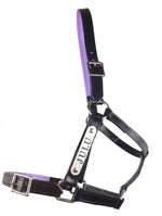 PVC Halter with Custom Engraved Nameplate - Black