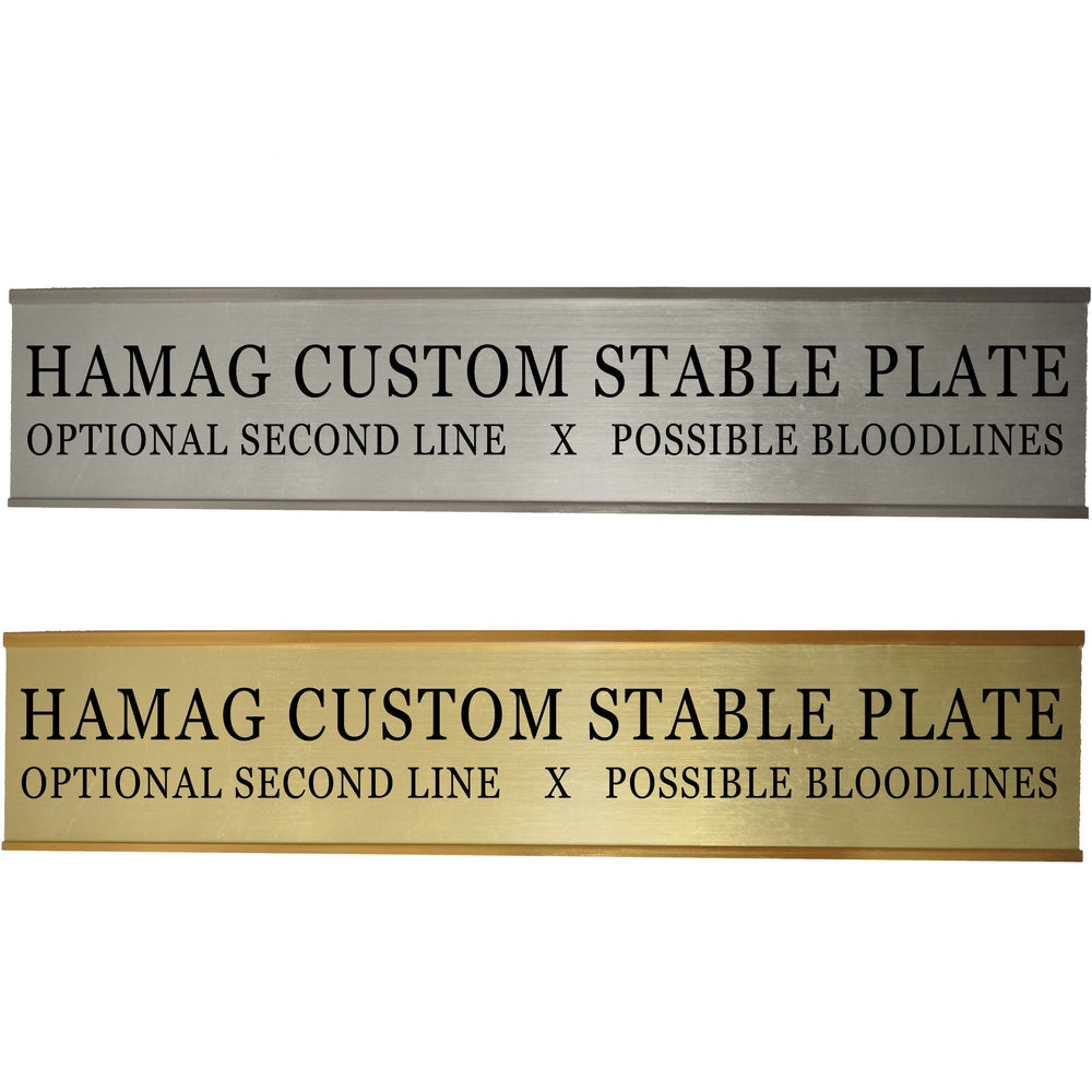 Slide-In Stable Plate