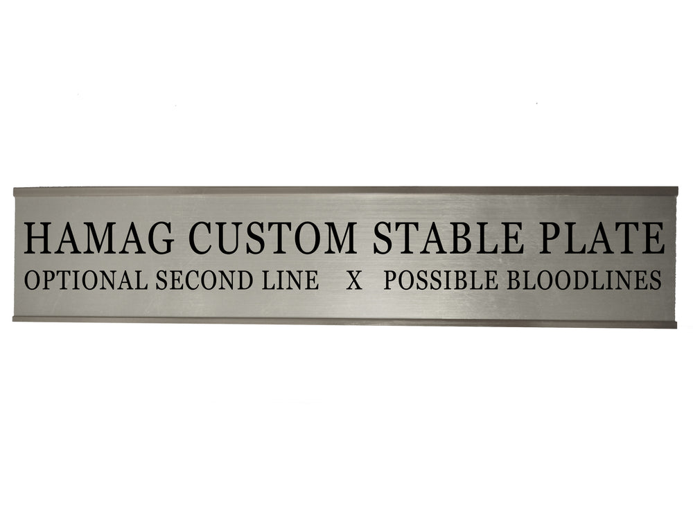 Silver Slide-In Stable Plate