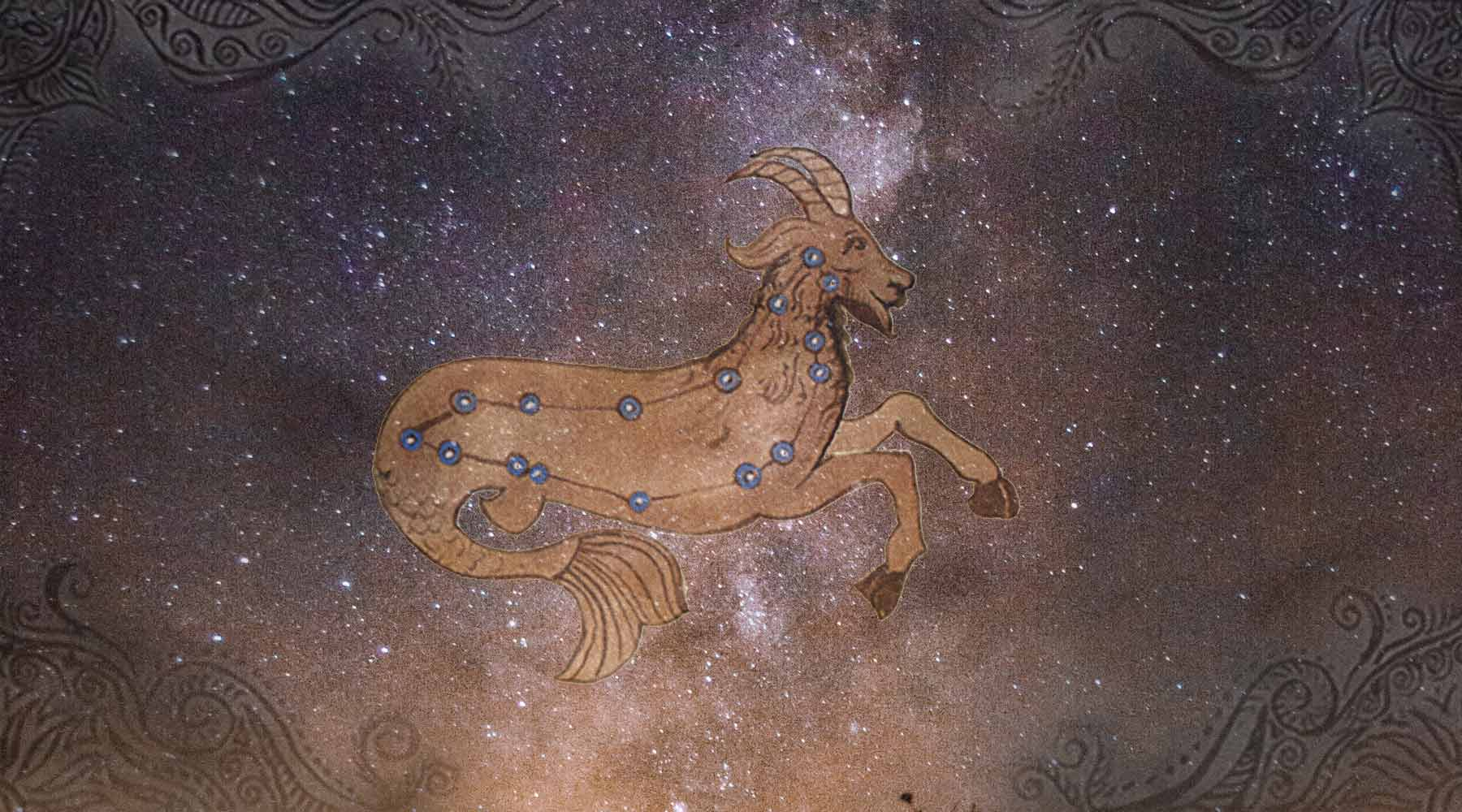 Capricorn meaning in Vedic Astrology