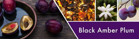 Black Amber Plum Fragrance