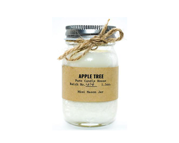 Apple Tree | Mini Mason Jar